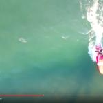 【画期的】サーフィンの空撮で自身のフォームチェックに使用してはいかがでしょうか?