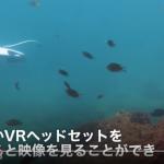 """【革命】水中ドローン""""PowerRay""""釣りの概念を覆す!?"""