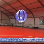 【世界初】浮遊球体ドローン「ドローンディスプレイ」をドコモが開発!